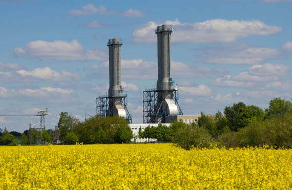 Combined cycle power plant behind a field of golden flowers